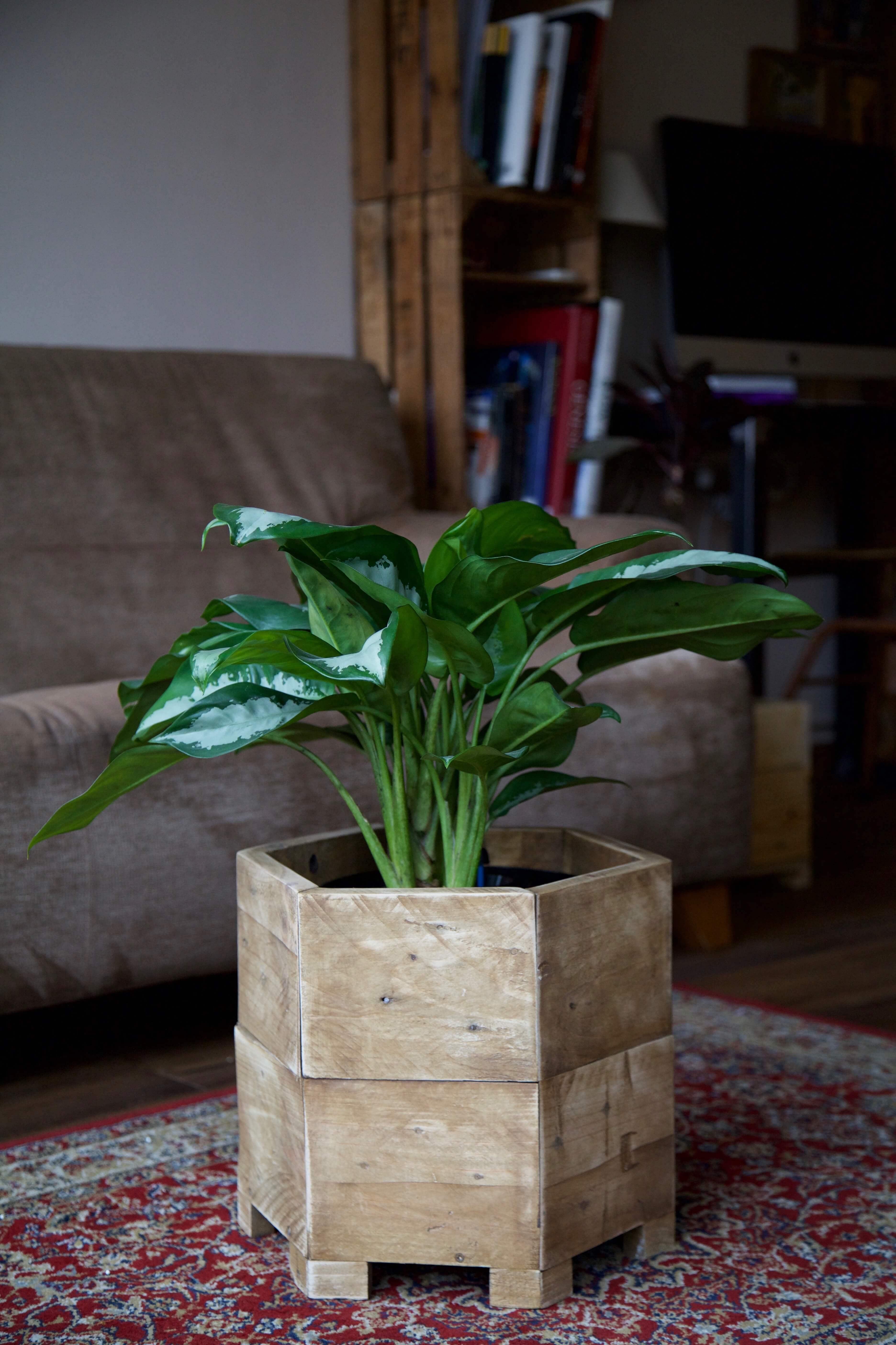 Jardineras con palets flores en palets de madera jardinera estante original palet jardinera - Como hacer jardineras con palets ...