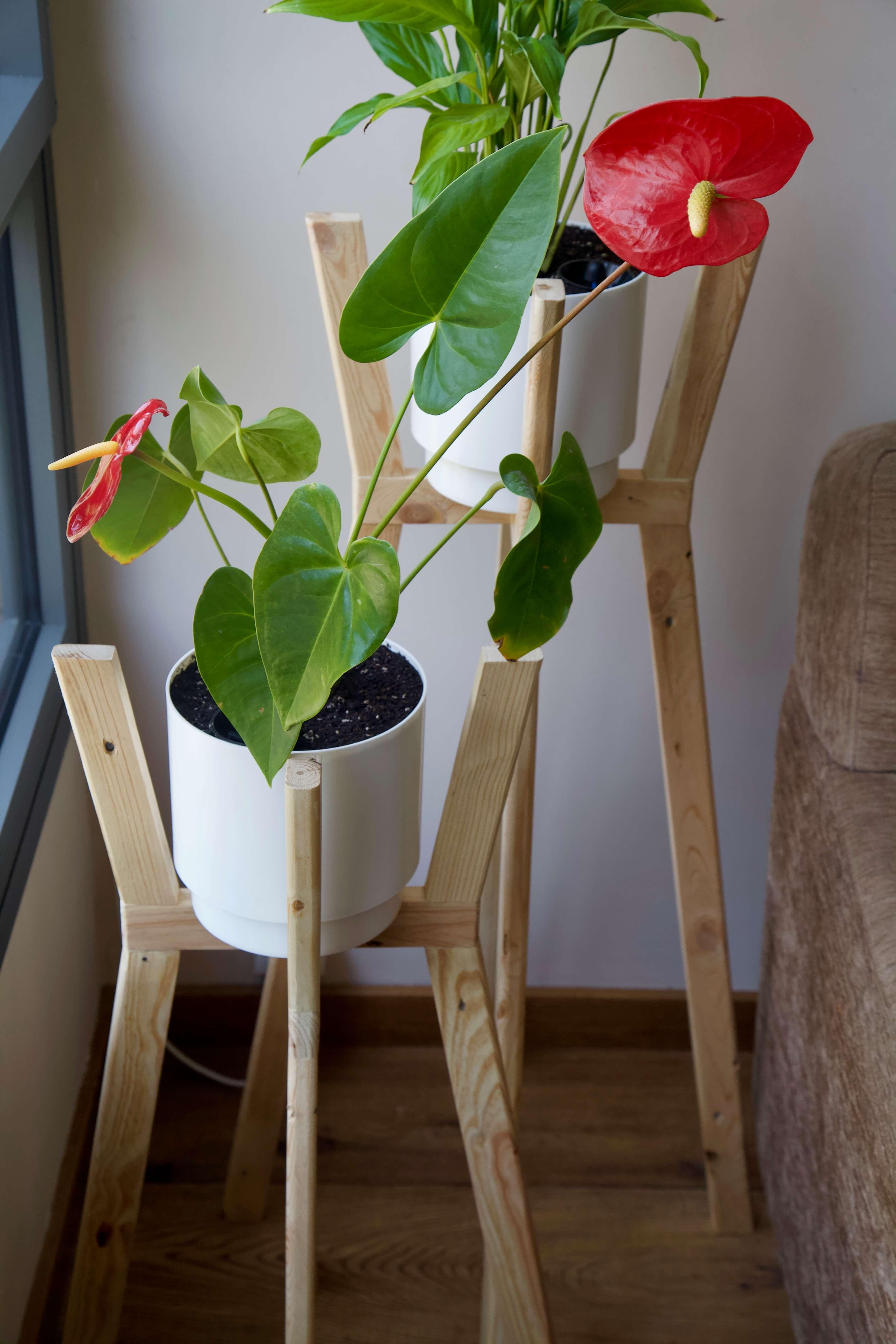 detalle desde arriba de los dos maceteros con ángulo hechos con madera de palet